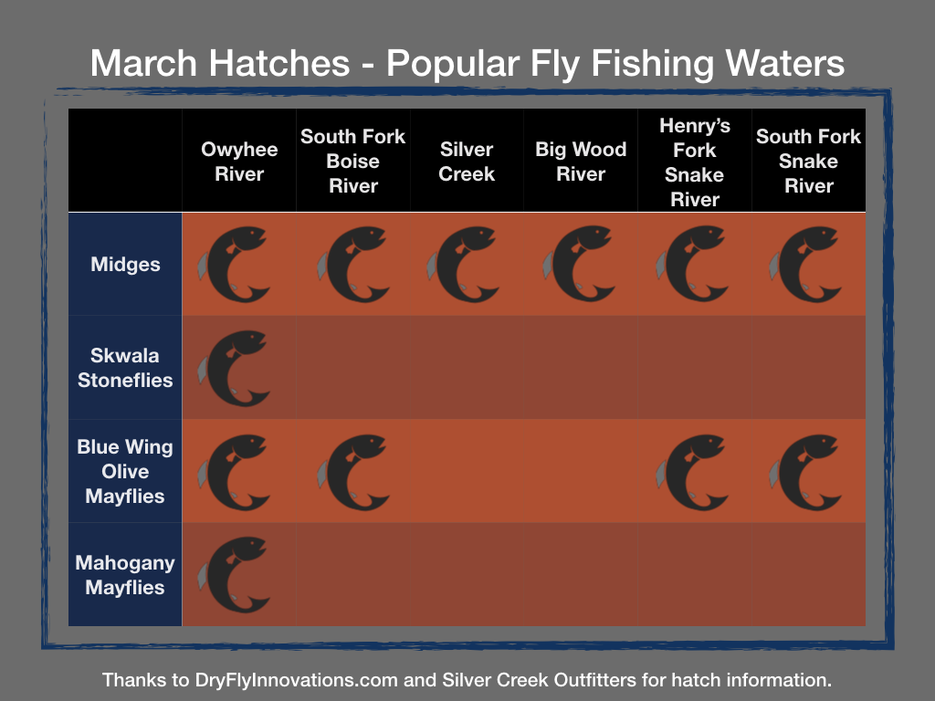 march hatch chart